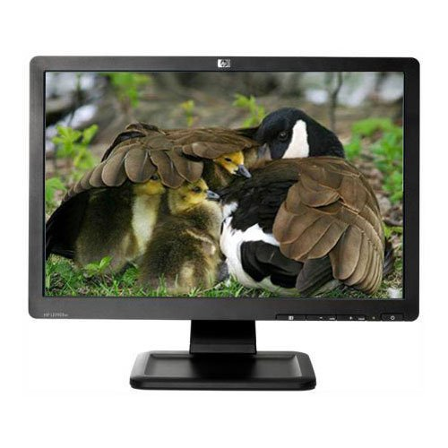 HP LE1901W 19 pulg WIDE LCD 19